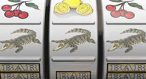 Vous êtes dépendant au jeu ?…  Adoptez un crocodile !