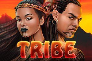 Tribe machine a sous